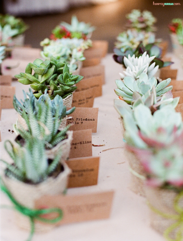 succulent-escort-cards-wedding