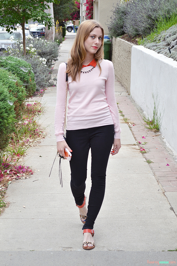 contrast-collar-madewell-sessun-sweater